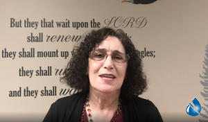 Splash Meeting dr joelle suel 2020