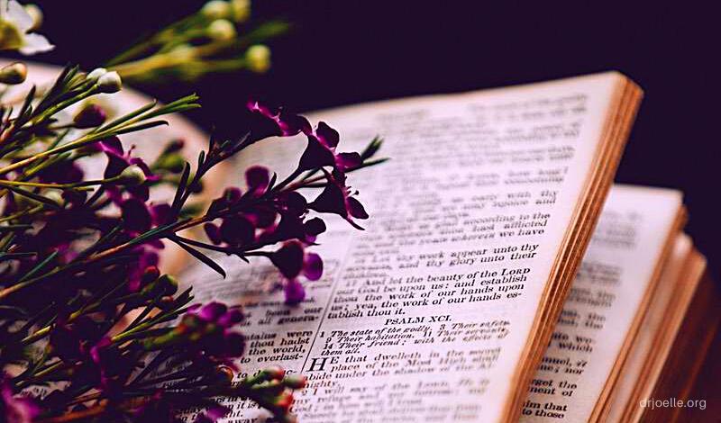 drjoelle, joelle suel, christianity, bible, jesus, christian author, daily devotions, daily encouragement, colorado pastor